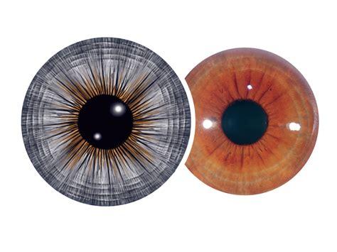 iris pattern types anxiety tetanic infinite iris
