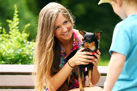 socializing a puppy tips for socializing a puppy with