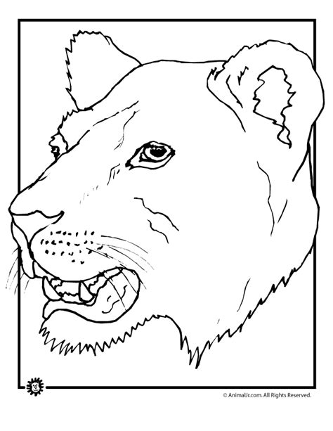 free coloring pages of lion animal mask