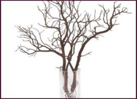 decorative driftwood branches wholesale decorative branches manzanita and botanical