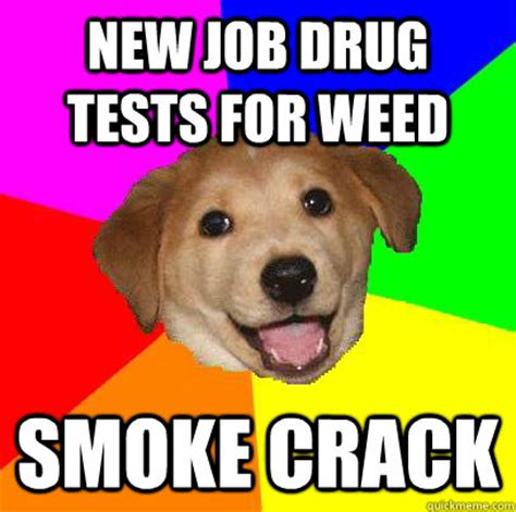 Smoking Crack Meme - new job drug tests for weed smoke crack advice dog