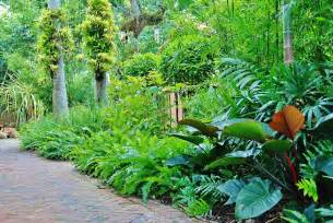 tropical landscape design images