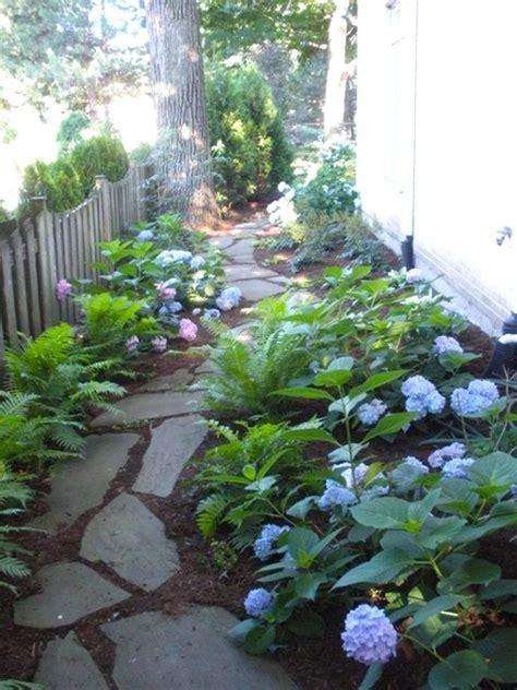 suburban backyard landscaping ideas best 25 side garden ideas on side yard
