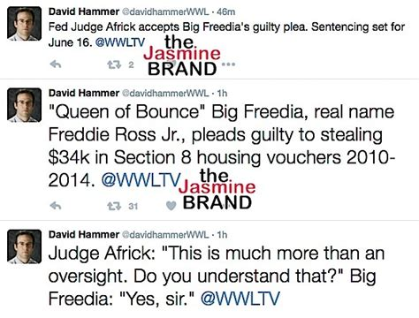 section 8 housing vouchers big freedia pleads guilty to stealing section 8 housing