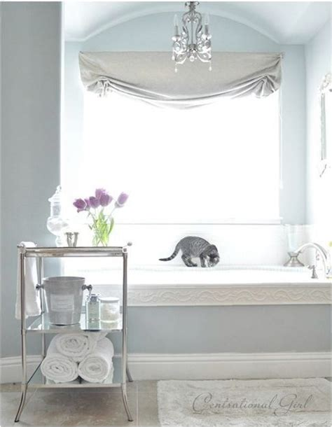 sherwin williams silver mist bathrooms
