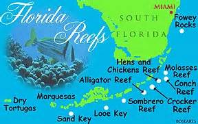 florida coral reef map florida s reefs
