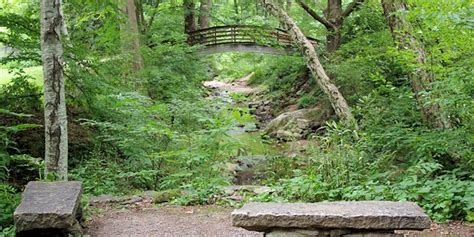 Botanical Garden Asheville Botanical Gardens Of Asheville