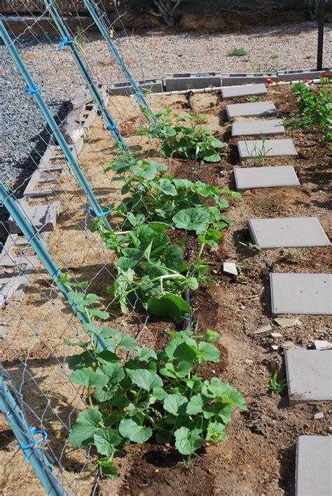 garden support structures 187 enoch gardens