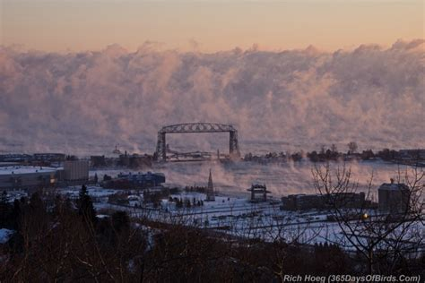 Lake Superior Sea Smoke | sea smoke deep freeze birding on the arctic riviera 365