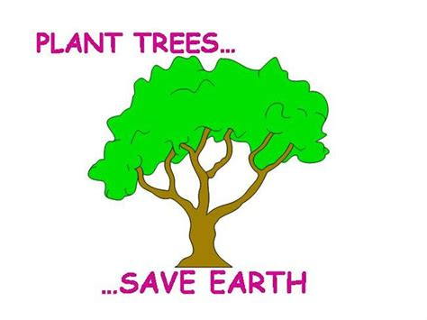 Plant Trees Save Earth Essay by Save Earth Plant Trees Beatiful Tree