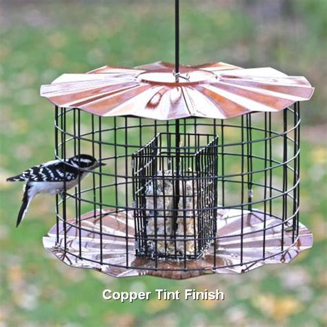 caged barrier guard multi bird feeder