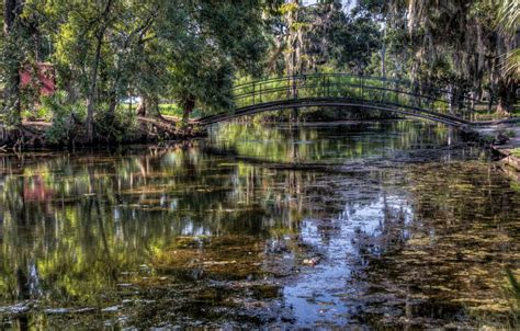 on the bayou bayou related keywords suggestions bayou