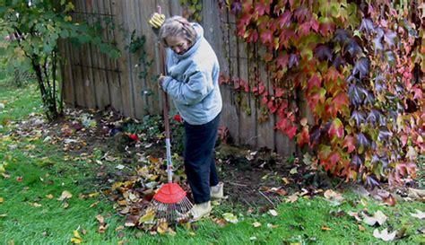 Garten Winterfest Machen Hortensien by So Machen Sie Ihren Garten Winterfest
