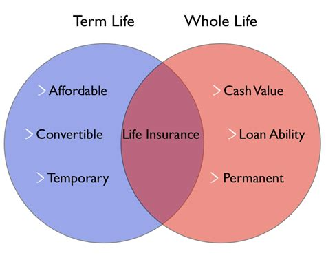 whole life policy term life vs whole life a consumer s guide