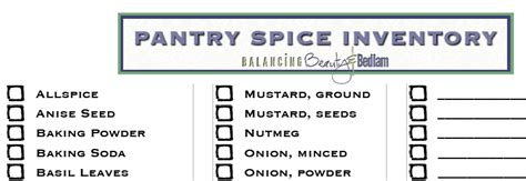 free pantry spice inventory checklist surviving the stores