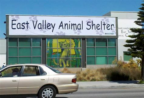 animal shelter banner images