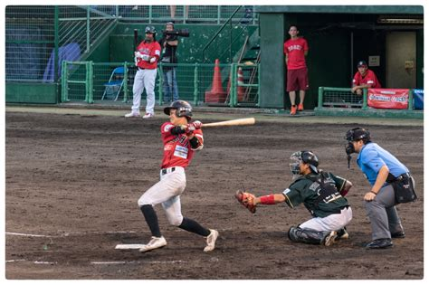 kochi fighting dogs あしずり アート ashizuri kochi fighting dogs 高知 vs 香川