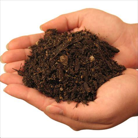 the dirt on potting soil