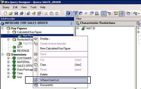 tutorial sap query designer sap bex query designer features