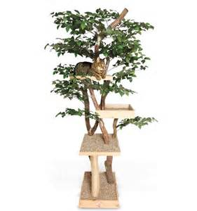 cool cat room tree ozzy izzy s dream cat room