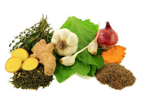 alimentos  propiedades antibioticas el correo del sol