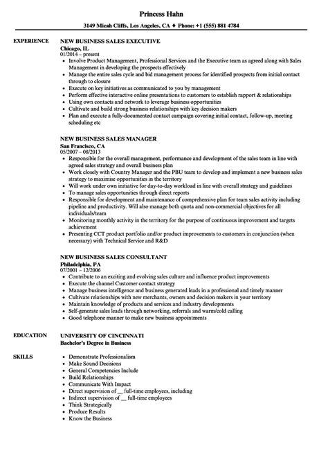 Business Sle Resume by New Business Sales Resume Sles Velvet