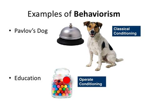exle of behaviorism learning isms w class notes