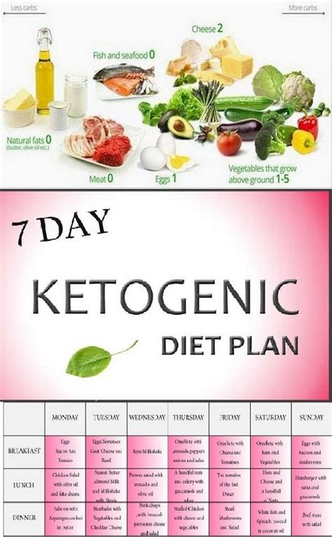 Detox Ketosis by The 25 Best Ketogenic Diet Ideas On Ketogenic