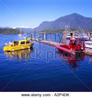 zodiac boats vancouver island whale watching with zodiac boats vancouver island victoria