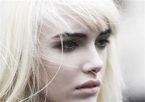 images of hair bleached white hair color donalovehair