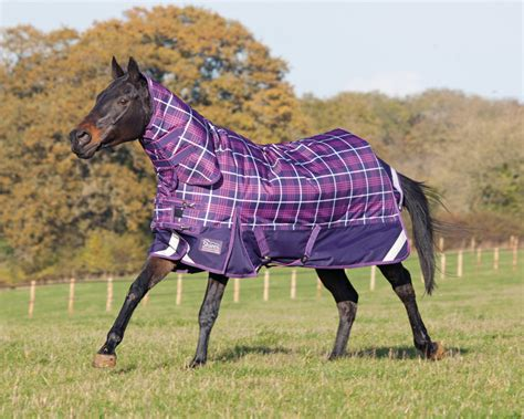 turn out rugs shires winter highlander combo turnout rug 2014 purple fuchsia check ebay