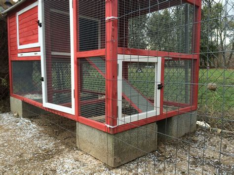 tractor supply coops backyard chickens