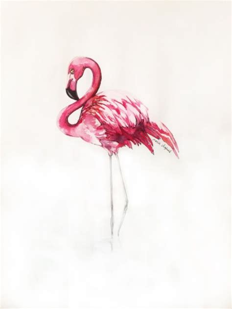 25 best ideas about flamingo tattoo on pinterest