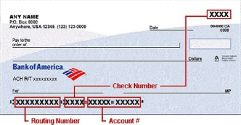 Bank Of America Background Check Bank Of America Routing Number California New York Florida