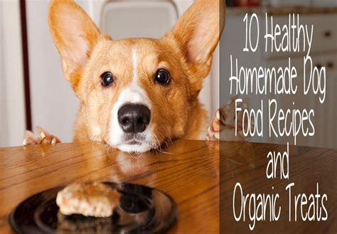 organic treat recipes 10 healthy food recipes and organic treats autos post