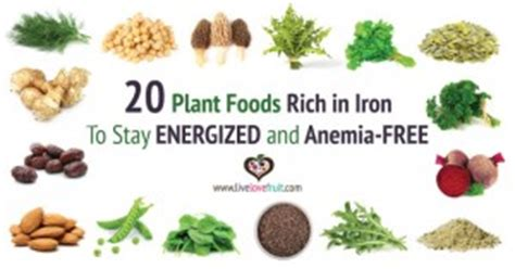 alimenti ricchi di minerali carenza di ferro 20 alimenti da mangiare ricchi di ferro