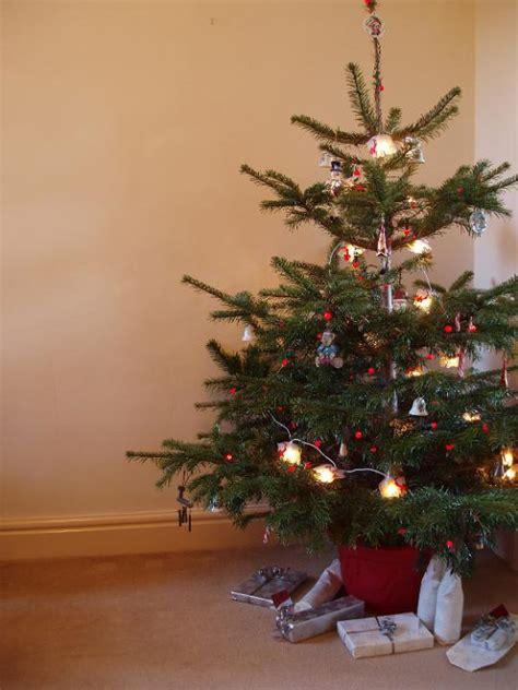 photo  christmas tree presents  christmas images