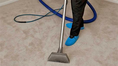 couch cleaning calgary carpet cleaners calgary se carpet nrtradiant