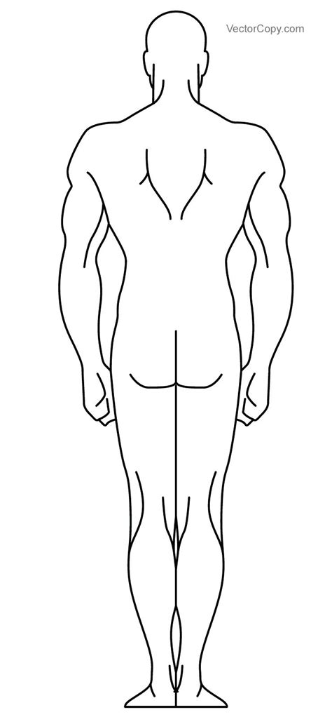 Outline Of Human Body Template Human Template