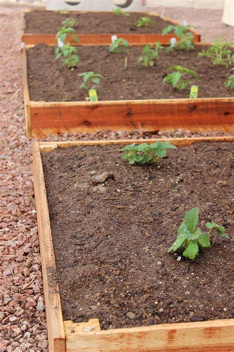 Cedar Planters Plans by Diy Cedar Planter Woodworking Projects Plans