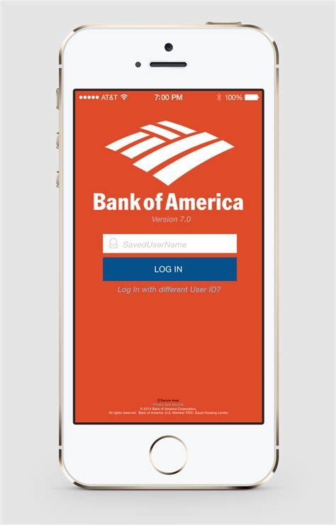 app bank of america mike gallardo portfolio