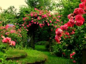 Pink Flower Garden Flower Garden Flower Hd Wallpapers Images Pictures Tattoos And Desktop Background