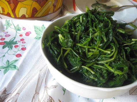 come cucinare le cicorie selvatiche ricetta cicoria selvatica cottura light calorie e valori