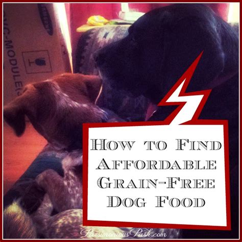 How To Find Information On For Free How To Find Affordable Grain Free Food