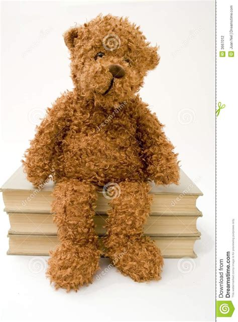 teddy the books teddy sitting on books stock photography image 3667012