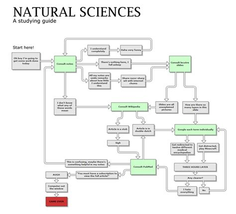 scientific flow chart studying science flow chart laughs
