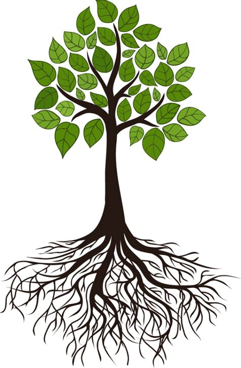 Exceptional Calvary Church Online Service #3: Tree1-669x1024.png