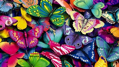 colorful cartoon wallpaper cool wallpapers hd with colorful butterfly in cartoon hd
