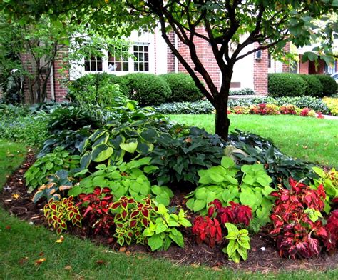 front yard landscape ideas shade the garden inspirations
