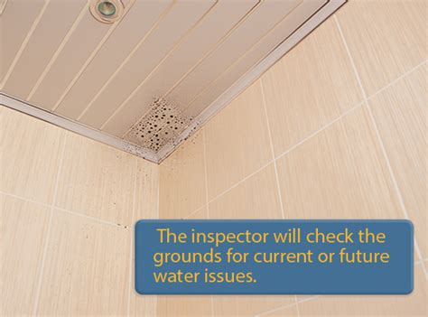 what home inspectors cover during home inspections call